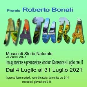 Concorso Roberto Bonali