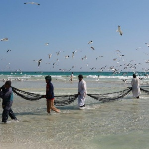 Battuta di pesca in Oman