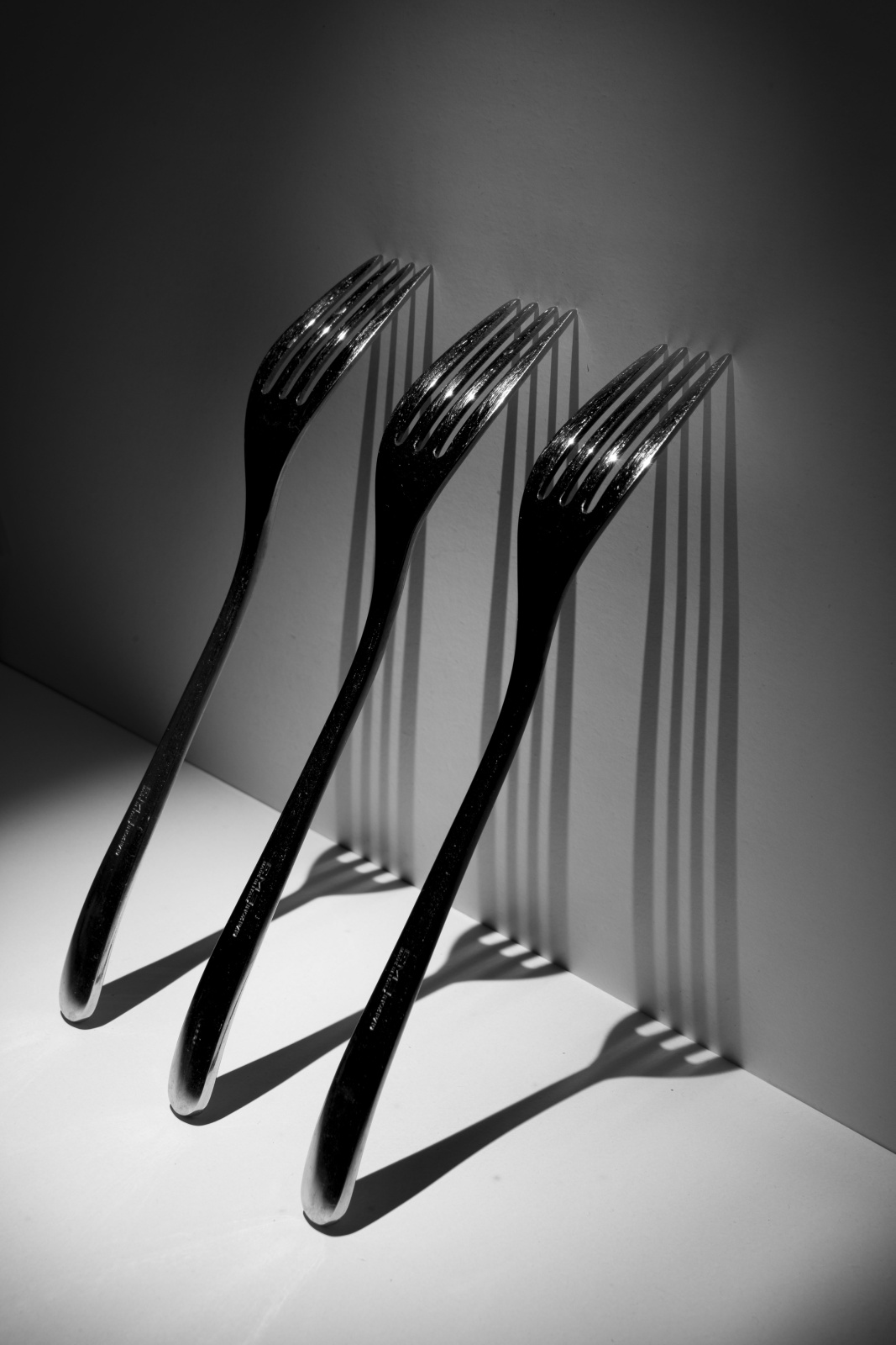 foto n 30 - Forks