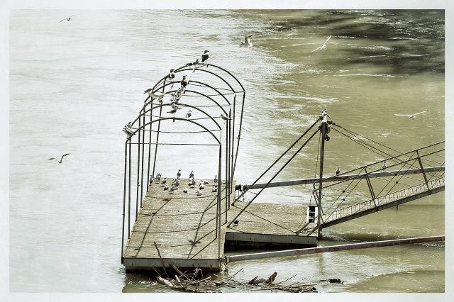 lì dove scorre il fiume (2012)